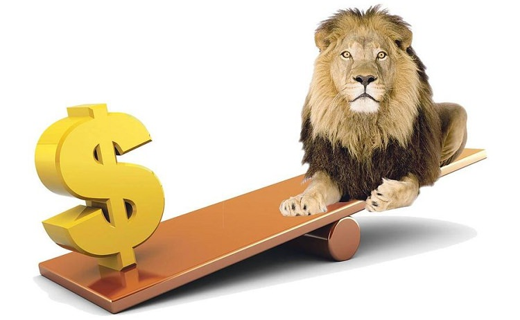 Devalorizare leu dolar