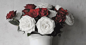 Flori cadou online